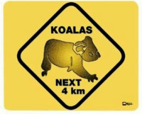 Mousepad Warnschild Koala