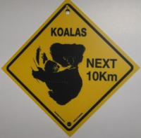 Warnschild Koala