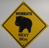 Warnschild Wombat