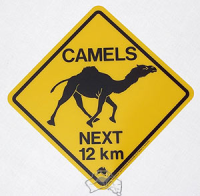 Warnschild Camel