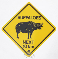 Warnschild Buffalo