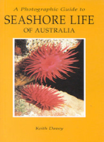 A Photographic Guide to Seashore Life of Australia: Keith Davey (engl.) 144 S.