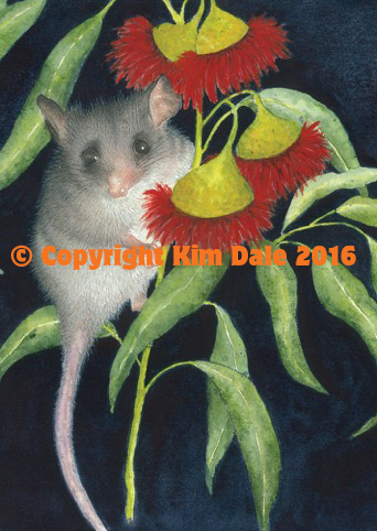 Grusskarte Little Pigmy Possum