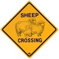 Warnschild Sheep Crossing