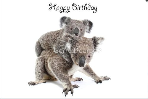 Grusskarte Koala Mutter & Baby Happy Birthday Quer