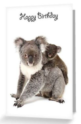Grusskarte Koala Mutter & Baby Happy Birthday