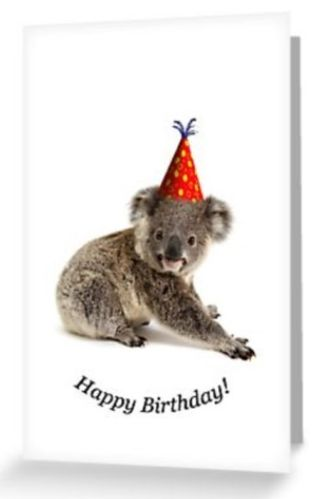 Grusskarte Koala Joey mit Hut Happy Birthday