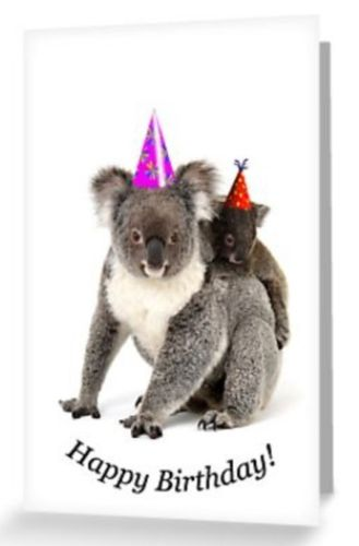 Grusskarte Koala Mutter mit Joey Happy Birthday Hüte